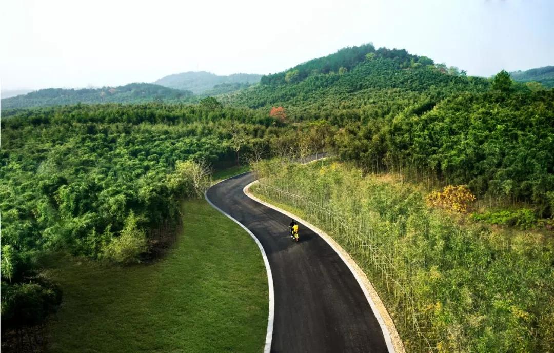 """市中心40公里外,毗邻莫干山,融创把这个小镇打造成了杭州人的""""诗和远方"""""""